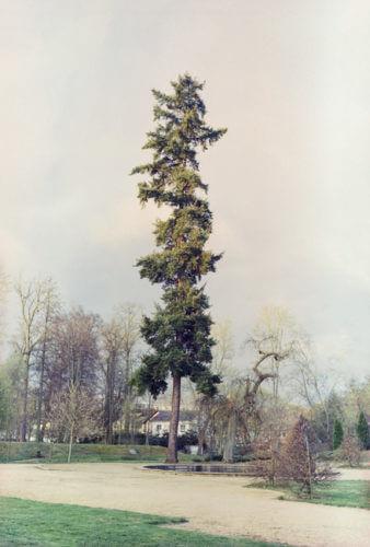 Foto obraz Ostrov Daniela Šrámková